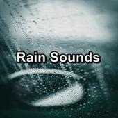 Rain Sounds by White Noise Baby Sleep (1)