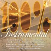 100% Instrumental de Various Artists