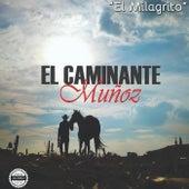 El Milagrito de El Caminante Muñoz