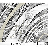 Pomelo 1994-2007 :: 13 Years von Various Artists