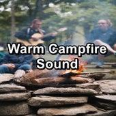 Warm Campfire Sound de Nature Sounds Nature Music (1)