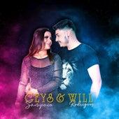 Geys Sampaio & Will Rodrigues de Vários intérpretes