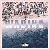 Wading (Deluxe Edition) di Kal