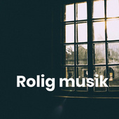 Rolig musik - Hyggelig musik by Various Artists