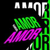 Amor Amor von Various Artists