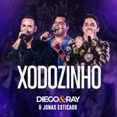 Xodozinho (Ao Vivo) de Diego