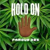 Hold On de Famous Dex