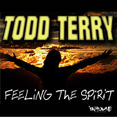 Feeling The Spirit by Todd Terry