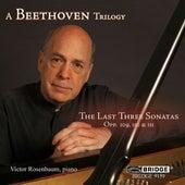 A Beethoven Trilogy von Victor Rosenbaum