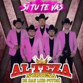 Si Tu Te Vas de Alteza Norteña de San Luis Potosí