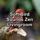 Soft Bird Sounds Zen Livingroom by Spa Music (1)