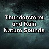 Thunderstorm and Rain Nature Sounds by Rain Sounds and White Noise