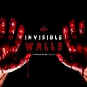Invisible Walls by Switch
