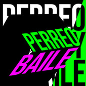 Perreo y Baile von Various Artists