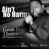 Ain't No Harm by Isaiah D. Thomas