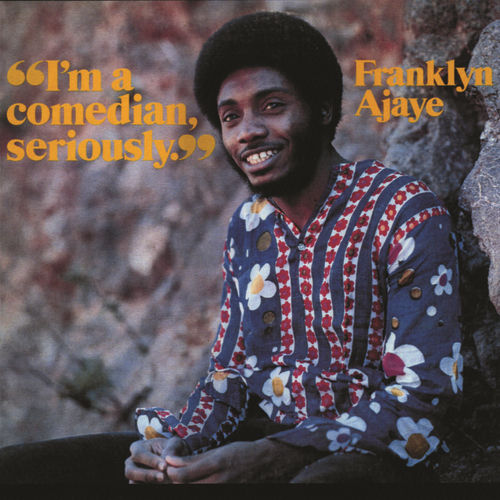 I'm A Comedian, Seriously by Franklyn Ajaye