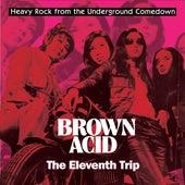Brown Acid - The Eleventh Trip von Various