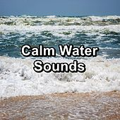 Calm Water Sounds by Rain Sounds (2)