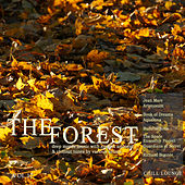 The Forest Chill Lounge, Vol. 17 (Deep Moods Music with Smooth Ambient & Chillout Tunes) von Various Artists