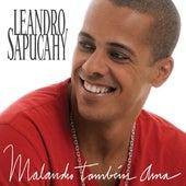 Malandro Também Ama de Leandro Sapucahy