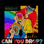 Can you Drop? de Kaleidoscope