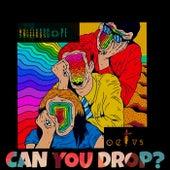 Can you Drop? by Kaleidoscope