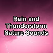 Rain and Thunderstorm Nature Sounds by Rain Sounds (2)