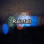 Rainfall by Rain Shower