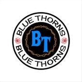 Kentucky Trailer Park Blues de Blue Thorns
