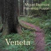 Veneta by Miguel Espinoza Flamenco Fusion