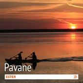 Pavane by Ester