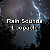 Rain Sounds Loopable by Rain Sounds Nature Collection