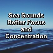 Sea Sounds Better Focus and Concentration by Deep Sleep Meditation