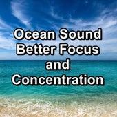 Ocean Sound Better Focus and Concentration de Ocean Sounds Collection (1)
