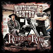 Rebels On The Run de Montgomery Gentry
