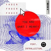 YOU KNO WHAT I MEAN?! (feat. Infrallectual) by The Fader
