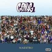 Gang von Maestro