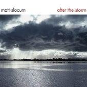After the Storm by Matt Slocum
