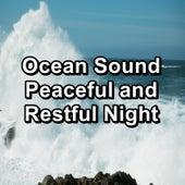 Ocean Sound Peaceful and Restful Night von Yoga