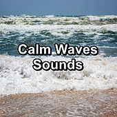 Calm Waves Sounds by Sleep Music Lullabies (1)