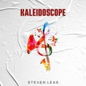 Kaleidoscope van Steven Leas
