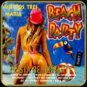 Fiesta Beachparty, Vol. 1 by Cees Vermeulen Windsant
