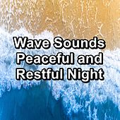 Wave Sounds Peaceful and Restful Night di Deep Sleep Relaxation