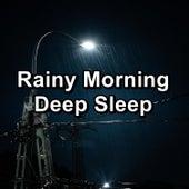 Rainy Morning Deep Sleep de Sounds Of Nature