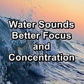 Water Sounds Better Focus and Concentration de Meditation Music