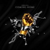 Coming Home de Andre Lee Ali