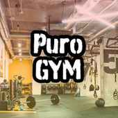 Puro GYM de Various Artists
