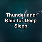 Thunder and Rain for Deep Sleep by Asmr