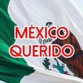 México Querido by Various Artists