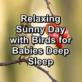 Relaxing Sunny Day with Birds for Babies Deep Sleep de Binaural Beats Sleep